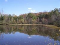Beautiful river frontage, 2 ponds, several old