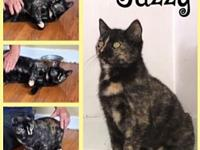 My story Jazzy is a beautiful Tortie. She and her mom,