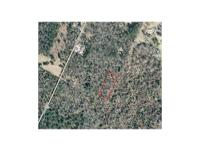 .5 Acres off Marsh Lane near Jenkinsville, SC. Call