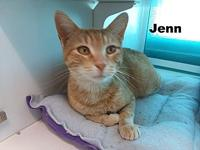 Jenn's story This sweet little girl is called Jenn. She