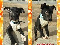 JERRICK's story Please contact Brandi