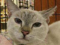 Jewel's story Estimated birth date:  Oct., 2011 If