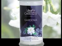 GARDENIA Tropical Gardenia with a floral body, creating