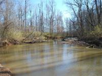 MINIMIZED! 99 acres situated on the Fairforest Creek in