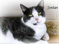 Jordan's story All of our pets are spay/neut, up to