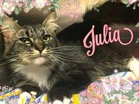 Julia's story ** Contact info: email