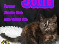 Julie's story You can fill out an adoption application