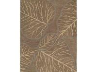 Astronomy Newton Chocolate 8 ft. x 11 ft. Area Rug is a