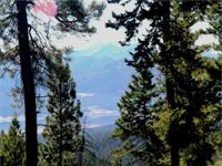 31+ acres of forested property with outstanding views