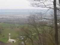 Wabasha Whitetails. 160 acre Wabasha Co, MN. 42 acres