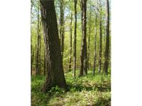 9.866 acres located in the heart of Kettle Moraine - 45