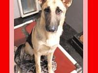 KEYNAI's story Please contact Jenny Cope