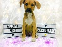Kimberly's story You can fill out an adoption