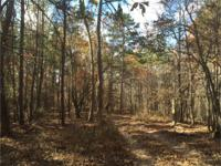 Primarily wooded parcel with mature timber with little