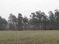 342 Acres Kingstree SC 100 acres in Cultivation, 200+