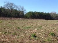 This 60 acre hunting tract is located off of Pinckney