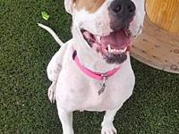 Kinlie's story Kinlie is all smiles! She is a 1.5 year