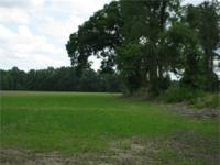 Here is a wonderful 47 acre farm for sale in Lenoir