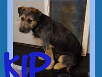 KIP's story Please contact Jenny Cope