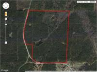 This beautiful 107+/- acre Attala County, MS investment