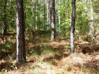 This beautiful 67+/- acre Attala County, MS investment