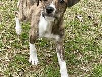 Kramer in Texarkana, TX's story Please contact Jeff