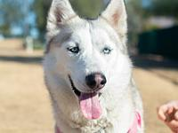 Kya's story Kya is a sweet girl with a very loving