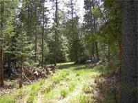 Michigan Wooded Parcel For Sale! This 10+/- Acre parcel