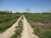 Acreage in La Feria 14.34ac THIS LARGE PIECE OF LAND
