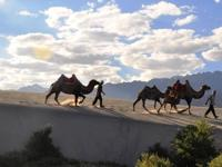 SPLENDOUR OF LADAKH Duration: (7 Days & 6 Nights)