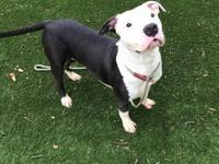 Courtney is a loving, kind and gentle girl who seeks
