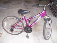 This is a Roadmaster Mt. Sport SX bicycle. It has