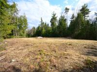 23 +/- acres of wooded land with 1,450 +/- feet