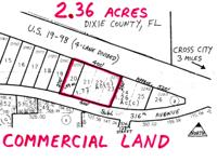 Land for Development in Cross City, Florida. Asking