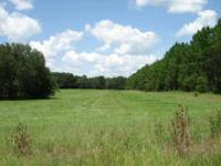 Land for Development in Gainesville, Florida. Asking