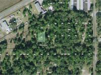 Land for Development in Marion, Florida. Asking price: