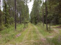 Land for Development in Melrose, Florida. Asking price: