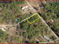LAND FOR SALE BY OWNER. LIVINGSTON TEXAS 77399 If you