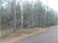 15.58 Acres of land this property will make a great