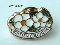 This vintage British Columbia Lapel/Hat Pin is in it's