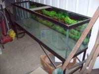 very large fish tank and stand $250 or best offer yes
