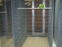 Large Walk-In Aviary Cage for sale. This used