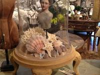 Large Bell Cloche Great look for the shabby chic table