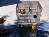 VERY NICE BIRD CAGE! HAS LOTS OF STUFF THAT GOES WITH