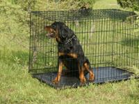Durable pet crate designed with convenient features in
