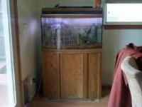 37 in x21in. x 12in. ......fish tank with stand, all