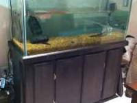 I have a 48x18x24 inch fish tank with a stand for sale