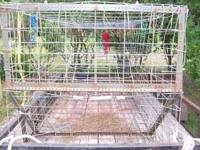 Large exprienced hog trap. 4' X 14' X 4 1/2' trap.