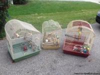 Selling one large bird cage and also one medium-sized