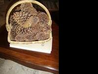 Large Pine Cones from craft store displayed in